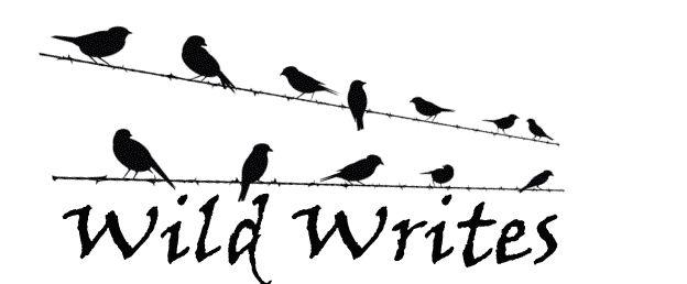 Wild Writes