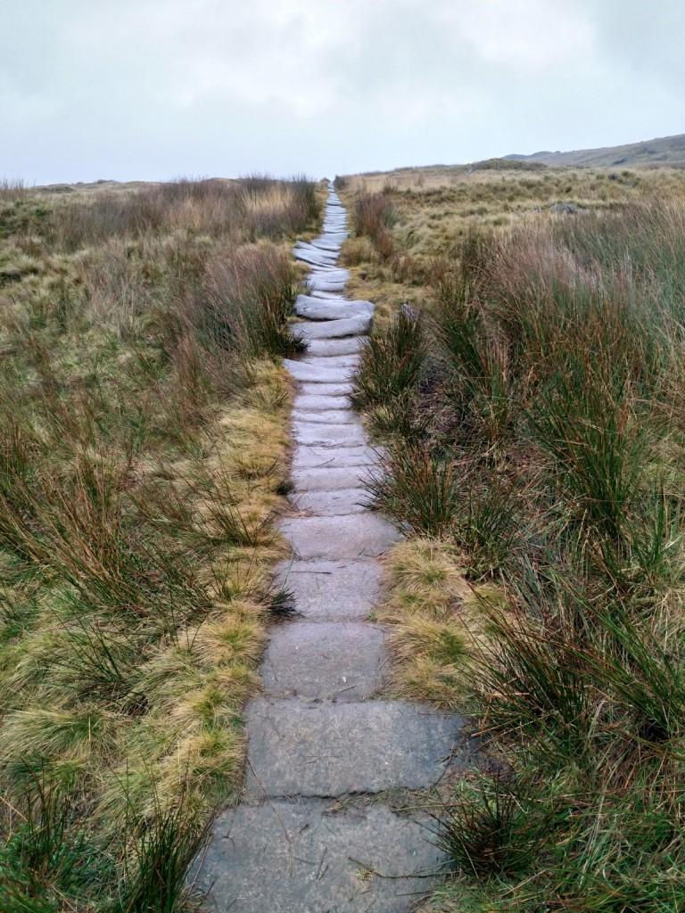 An uneven flagged pathway through fields